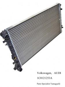 Volkswagen  Audi  1C0121253A