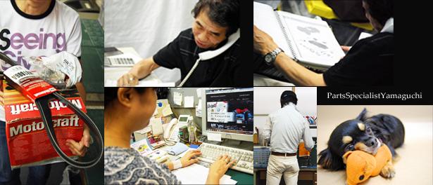 PSY staff
